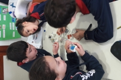 2º-EDUCACIÓN-PRIMARIA-TALLERES-DE-AULA-006