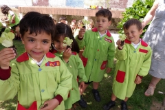 Horta-escolar-EI-035