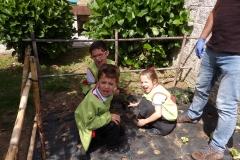 Horta-escolar-EI-047