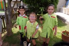 Horta-escolar-EI-073