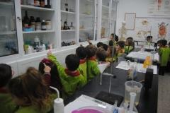 Laboratorio-008