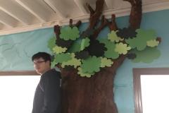 Proxecto-da-árbore-014